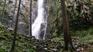 מפל בורגבך - המפל הנסתר של היער השחור